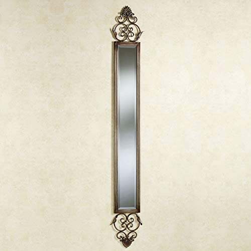 Touch of Class Taneisha Scroll Mirror Panel Beige Brown