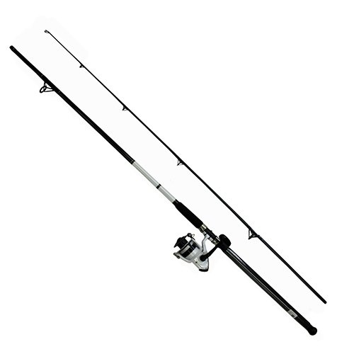 (Daiwa DWB50-B/F1102M D-Wave Saltwater Spinning Combo, 1 Bearing, 11' Length, 2Piece Rod, Medium Power, Fiberglass Blank)
