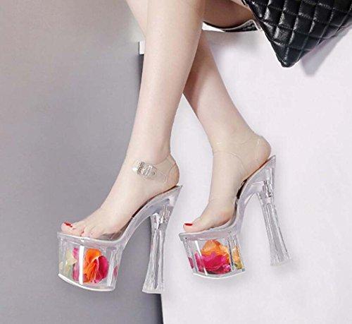 Las Punta Mujeres de Sandalias Tac de Zapatos Abierta 6q15Stxw