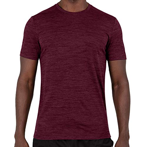 Alive Men's Tee Shirt Quick Dry Active Performance Short Sleeve Shirt (Medium, Maroon)