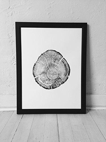 (Flathead Lake Montana Driftwood. Original Tree Ring Print. 18x24