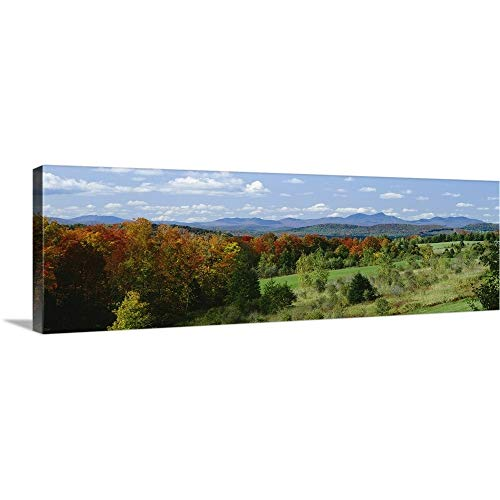 GREATBIGCANVAS Gallery-Wrapped Canvas Entitled High Angle View of Trees in The Forest, Newport, Vermont, New England by 60