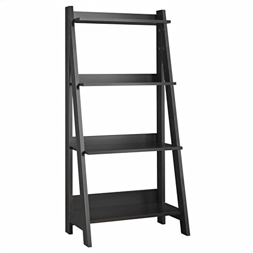 Cheap  Alamosa Ladder Bookshelf