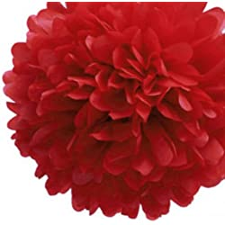 LingsFire® 10 Pack 10 Inch Tissue Paper Flower Ball Pom-poms For Party / Wedding / Home / Outdoor Decoration (Red)