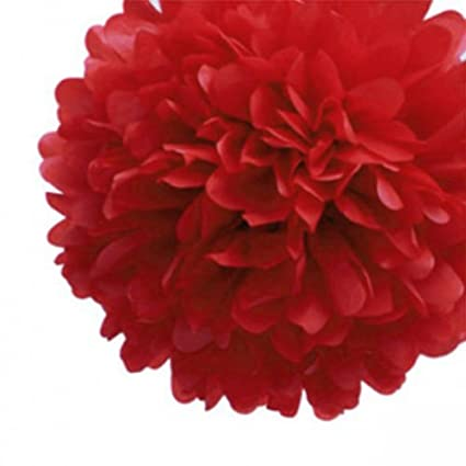 Amazon lingsfire 10 pack 10 inch tissue paper flower ball pom lingsfire 10 pack 10 inch tissue paper flower ball pom poms for party mightylinksfo