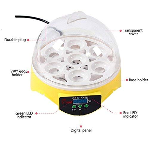 Currens Mini Egg Incubator,Digital Incubators for Hatching Chicken Turkey Quail Fertilized Eggs