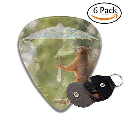 (Female Red Squirrel Standing On Stone Holding A Umbrella Stylish Celluloid Guitar Picks Plectrums For Guitar Bass .46mm 6 Pack)