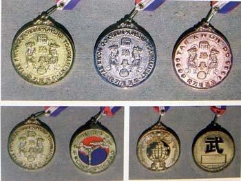 MARTIAL ARTS MEDAL GOLD - bronze (Bronze Art Medal)