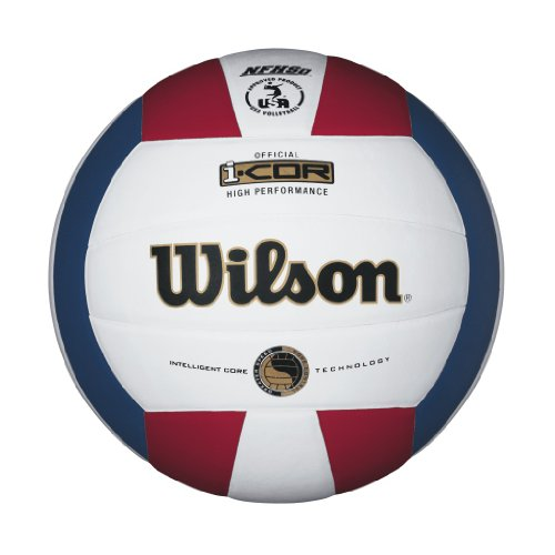 Top Indoor Volleyballs