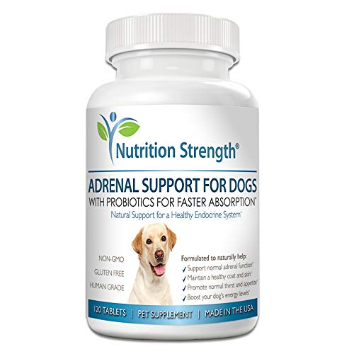 Nutrition Strength Adrenal Support for Dogs, Support for Dogs with Cushing's Disease, Maintain a Healthy Coat and Skin, Promote Normal Urination, Thirst and Appetite, 120 Chewable Tablets ()