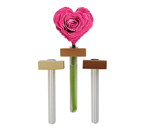 Garden Things Magnetic Flower Bud Vases 3 Pcs, One Size, Natural ()
