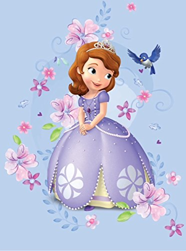 Princess Magical Garden Bedding - Blanket Disney Excel Very Soft Princess Sofia Magical Garden Twin