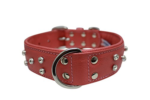 rhinestones bling leather dog collar