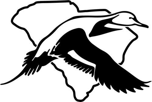 Mandy Graphics South Carolina Statte Pintail Duck Hunting Vinyl Die Cut Decal Sticker for Car Truck Motorcycle Windows Bumper Wall Home Office Decor Size- [8 inch/20 cm] Wide and Color- Gloss White