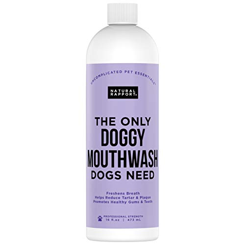 Natural Rapport Doggy Mouth Wash Water Additive to Freshen Bad Breath and Promote Dog Dental Health No Toothbrush or Toothpaste (16 fl oz.) ()