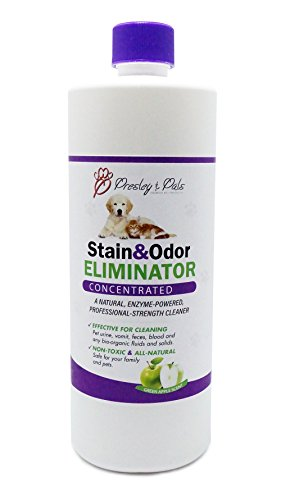 Pet Enzyme Cleaner, Stain & Urine Remover, Odor Eliminator. #1 Strongest Concentrated Formula (Makes Up to 1 Gallon). Cleans and Neutralizes Dog, Cat Urine, Feces, Vomit on Carpet, Upholstery.
