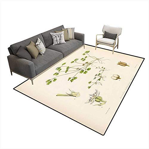 Kids Carpet Playmat Rug Azorella 5'x8' (W150cm x L240cm ()