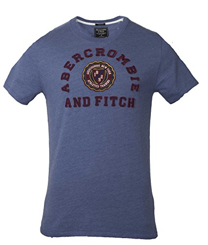 abercrombie-fitch-mens-muscle-fit-graphic-tee-t-shirt-l-blue