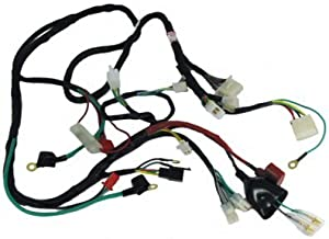 ice bear scooter wiring harness complete wiring diagrams u2022 rh oldorchardfarm co