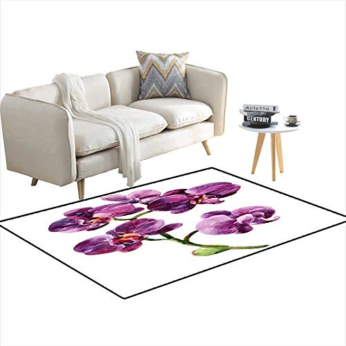 Extra Large Area Rug Watercolor orchiblooming Branch 4'x17' ()