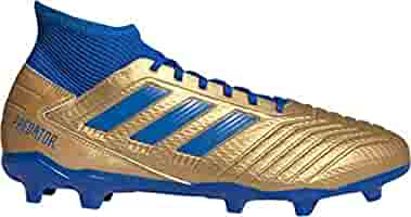 adidas Men's Predator 19.3 FG (Numeric_6_Point_5) BlueGold