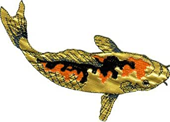 Koi fish orange and gold with black markings for Does fish have iron