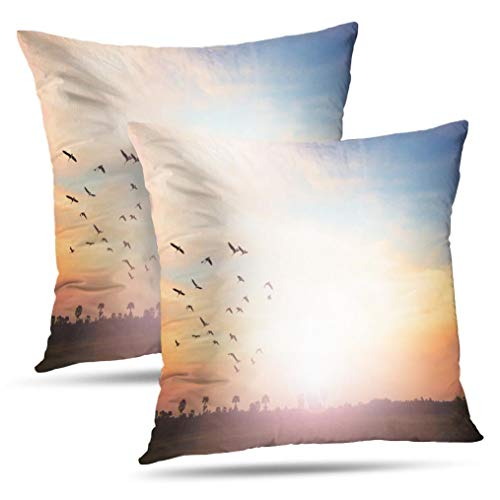 Tyfuty Spirit Throw Pillow Covers, PillowcasesColorful Sky Dramatic Sunset with Twilight Color and Cushion Use for Living Room Bedroom Sofa Office 18 x 18 inch Set of 2, Colorful Sky