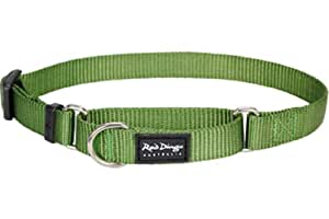 Red Dingo Classic Martingale Dog Collar, Small, Green