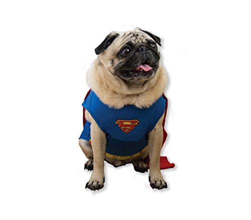 DC Comics Superman Dog Costume with Red Cape, Large | Best Superhero Dog Costume For All Large Dogs