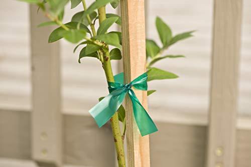 Gardener's Blue Ribbon T006B Sturdy Stretch Tie by Gardener's Blue Ribbon (Image #6)