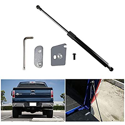 Tailgate Assist Lift Assist Shock Kit for 2015-2020 Ford F150 Pickup,DZ43204: Automotive