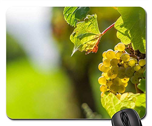 - Mouse Pad - Grape Vine Grapevine Berry Green Grapes Hell