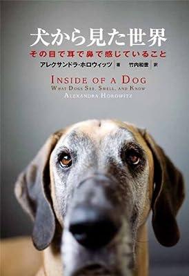 犬から見た世界—その目で耳で鼻で感じていること