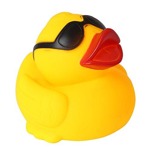 Rainbow Duck (5.7
