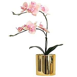 Leiyini Garden Artificial Flowers Simulation Phalaenopsis Bonsai Artificial Flower with Vase Simulation Phalaenopsis Flower Potted Plant Decoration for Table Home Office 65