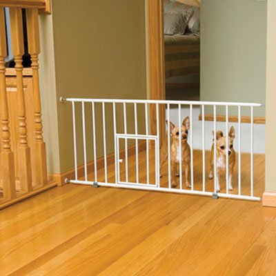 Amazoncom Carlson Pet Products 12 Inches Extension For Mini Gate