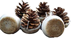 Kindlecone - Natural pine cone firelighters - Autumn Mist - Box of 6 by Kindlecone