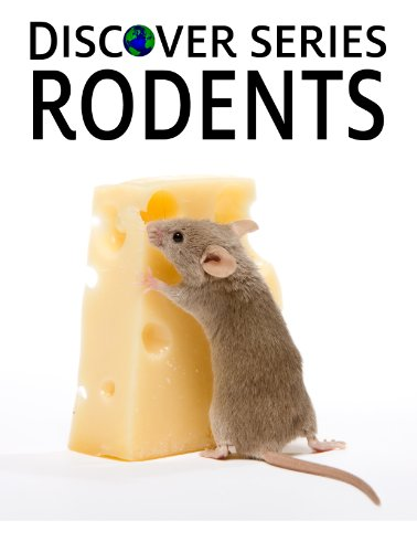 Rodents: Discover Series Picture Book for Children (Kindle Kids Library)