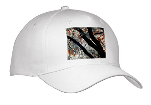 3Drose Danita Delimont   Forests   Usa  California  Yosemite Valley  Black Oak Tree    Caps   Adult Baseball Cap  Cap 278523 1