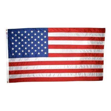Annin Nyl-Glo Nylon Outdoor U.S Flag (12 x 18-Inch Sewn)