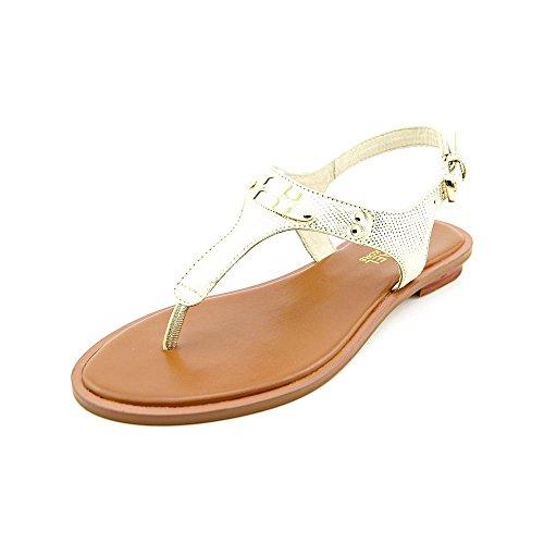 Michael Michael Kors Womens Mk Plate Thong Fabric Open Toe, Pale Gold, Size 6.5 (Michael Kors Fashion Store)