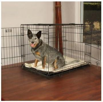 Petco Premium 2-Door Dog Crate, 36 L X 23 W X 25 H