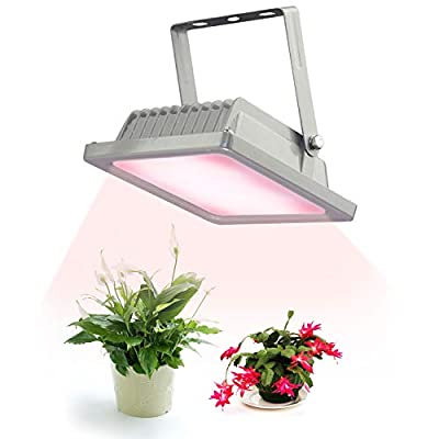 ACKE-Glow-Light-Plants-Light for Indoor Plants,Grow Lamps for Greenhouse,Grow Light Fixture for Plants' Growing
