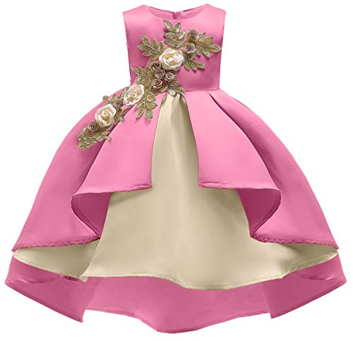 Pageant Dresses for Girls Party Kids Tea Knee Vintage Halloween Performance Prom Dresses 8T 8 Years (Pink,140)]()