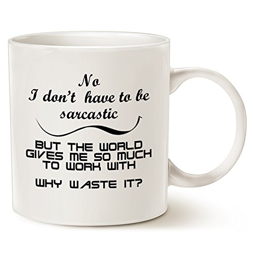 Funny Coffee Mug Christmas Gifts, Hilarious Why Waste Sarcastic Opportunity Best Home and Office Gifts for Friend Porcelain Cup White, 14 Oz by (Halloween Work Humor)