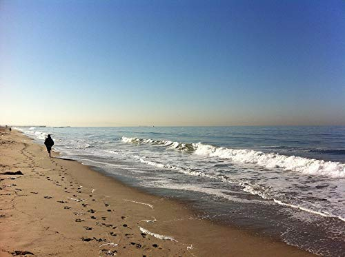 Home Comforts Canvas Print Los Angeles Sand Venice Track Water Waves Beach Vivid Imagery Stretched Canvas 32 x 24