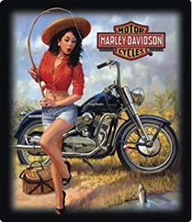 Amazon harley davidson classic models pin up girl sign home harley davidson nice catch babe embossed tin sign freerunsca Images