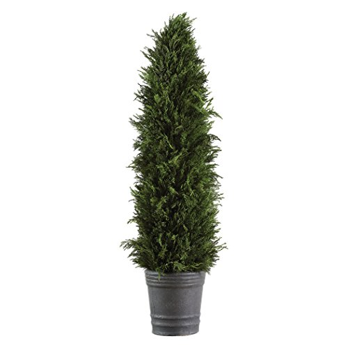 Evergreen Topiary (Tall Preserved Cypress Evergreen Topiary Tree | Permanent Greenery Cone Pot)