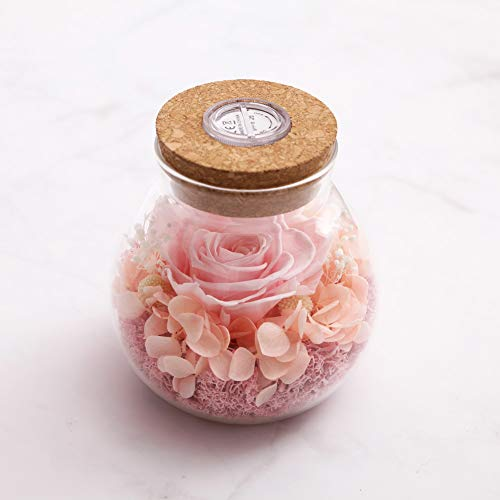 SANRAN Handmade Preserved Real Rose Present Gorgeous Led Mood Light, Upscale Gift Exquisite Eternal Flower Birthday, Anniversary, Valentine's Day, Christmas, Thanksgiving Day- (Rose Pink) (Flowers For Valentines Day Other Than Roses)