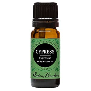 Cypress 100% Pure Therapeutic Grade Essential Oil by Edens Garden- 10 ml